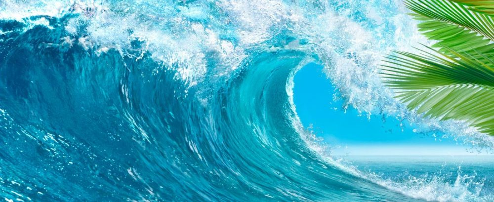 waves-palms