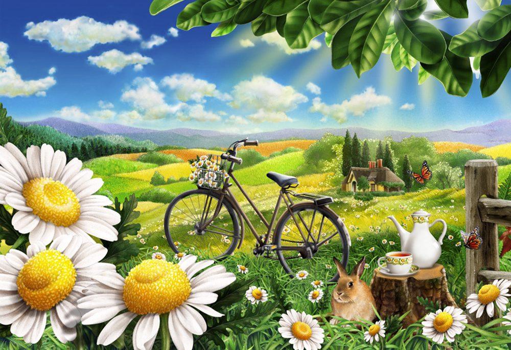 Chamomile & Bike Landscape Sunshine