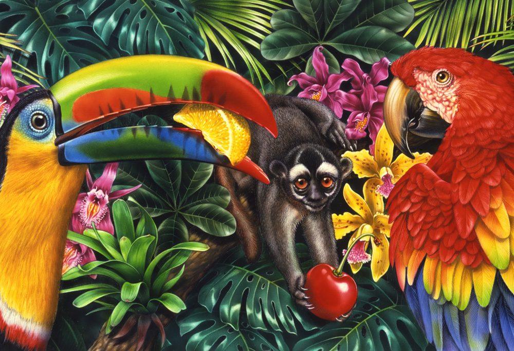 pin-toucan-monkey-parrot-jungle