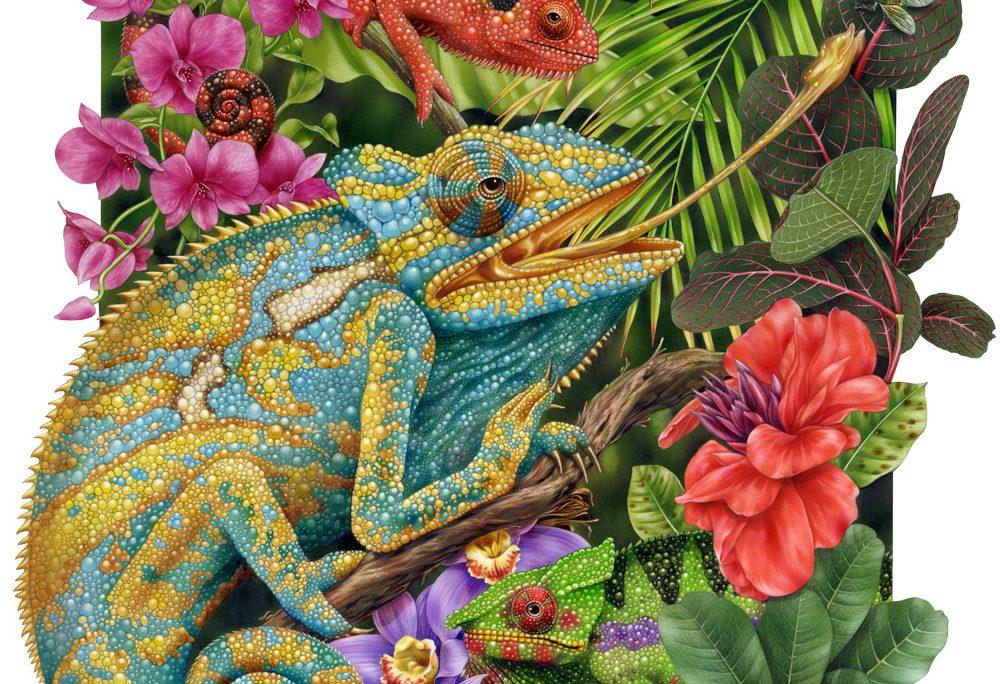 открытки с хамелеоном замечательная зелёная сумка